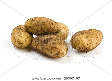 unwashed potatoes, isolated on a white background
