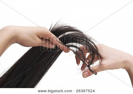 hair stylist cutting black long hair with professional scissors, beauty salon