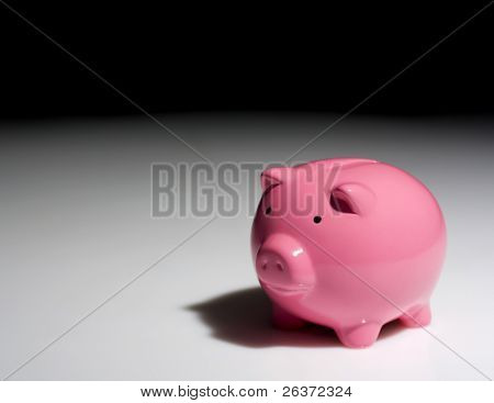piggy bank in the spotlight; financial crisis