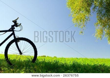 Bicicleta de montaña en un día soleado en el campo
