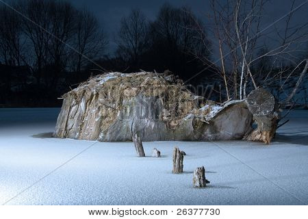 Snag stump at the middle of frozen pond at winter night
