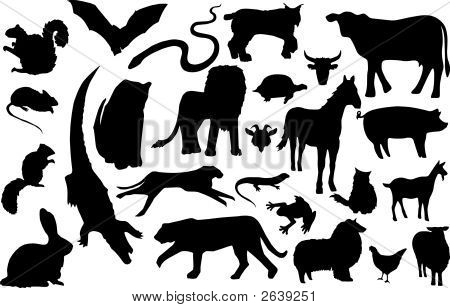 Land_Animal_Silhouettes
