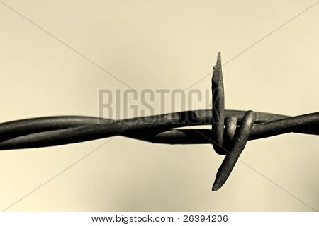 barbed wire, an abstract macro with limited depth of field and converted to monochrome.