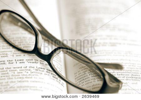 Taking A Reading Beak