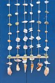 picture of windchime  - An arrangement of seashells as windchimes or a decoration - JPG
