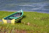 pic of dory  - A colorful dory resting along the shoreline in a salt marsh on the northern shore of Prince Edward Island - JPG