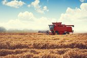 Combine Harvester Agriculture Machine Harvesting Golden Ripe Wheat Field poster