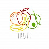 Sketch Fruit, Line Icon Fruit - Apple, Banana, Orange, Pear, Element Farm Products Logo, Vector Hand poster