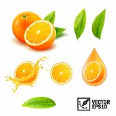 3d Realistic Vector Set Of Elements ( Whole Orange, Sliced Orange, Splash Orange Juice, Drop Orange  poster