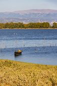 Old Black Boat With Oars And Wooden Sticks In The Water Of Kerkini Lake Greece, September Deep Blue  poster