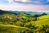 Langhe Vineyards Panorama, Barolo Village, Unesco Site, Piedmont, Northern Italy Europe. poster