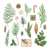 Watercolor Christmas Set With Evergreen Coniferous Tree Branches, Berries And Leaves. poster