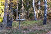 Birch Cross In A Deciduous Forest. War Graves From The Second World War In Northern Poland. Season O poster