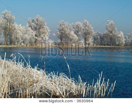 A Dutch Landscape In The Winter Season