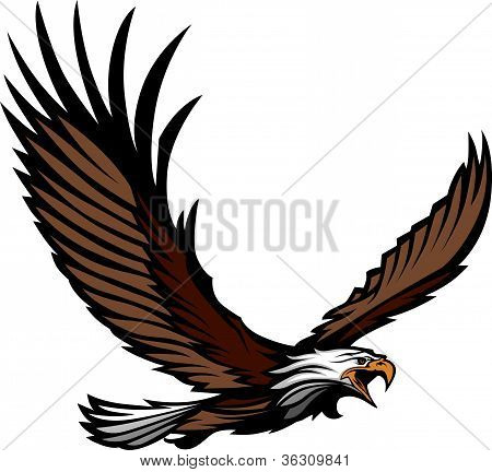Eagle Mascot Flying With  Wings Spread