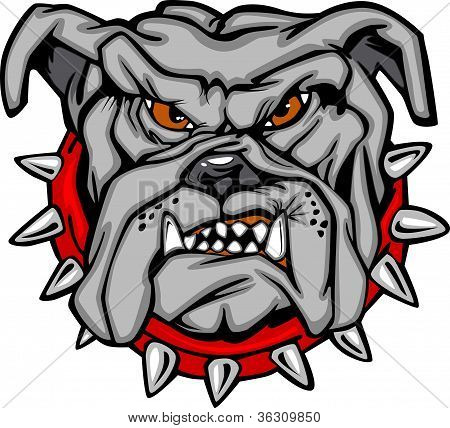 Bulldog Cartoon Face Vector Illustration