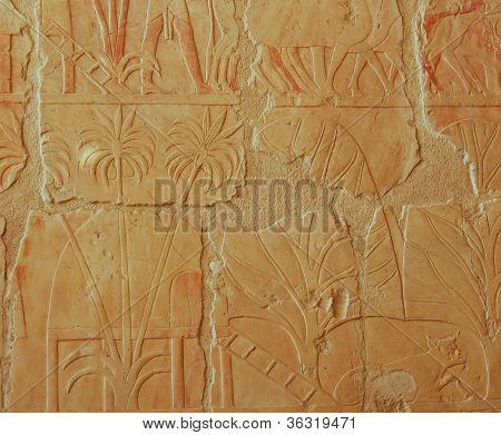 Egyptian Relief In Hatshepsut Temple