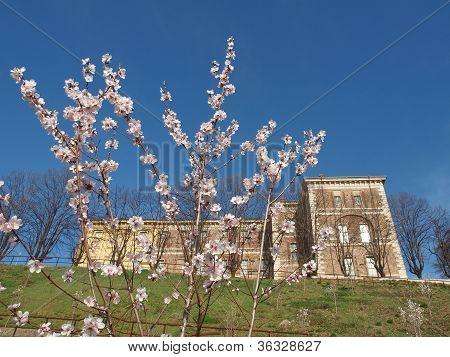 Castello di Rivoli, Italy