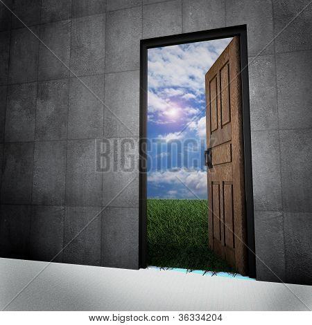 Old Vintage Door To New World.