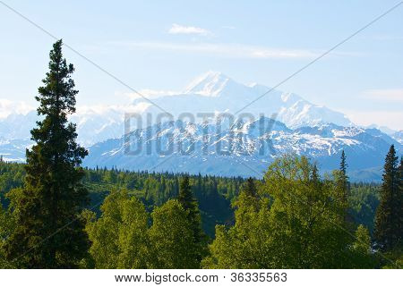 Mount Denali or McKinlye