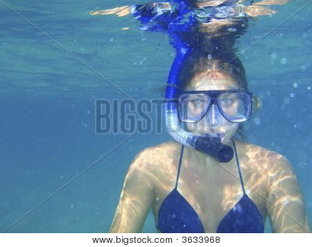 Snorkler Face Forward