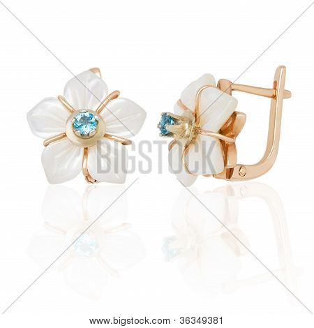 Jewelry Earring With Nacre On White Background