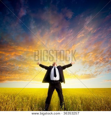 businessman on field