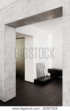 Modern minimalism style corridor interior in black and white tones