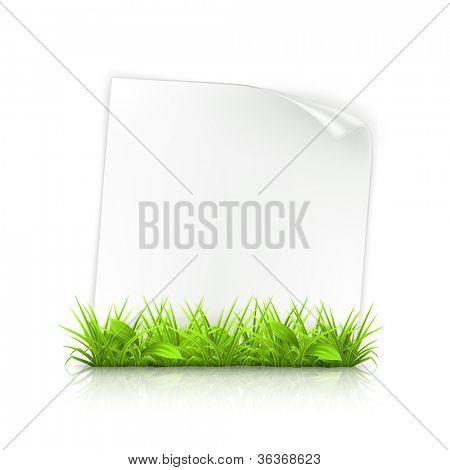 Gras und Papier, Vektor