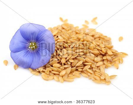 Seeds of flax with flower