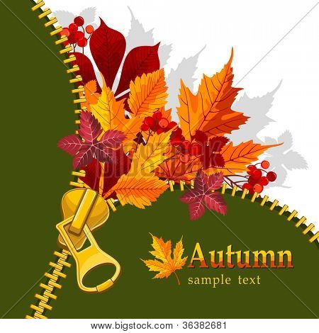 Autumn background with zipper and bright leaves. There is a place for your text.