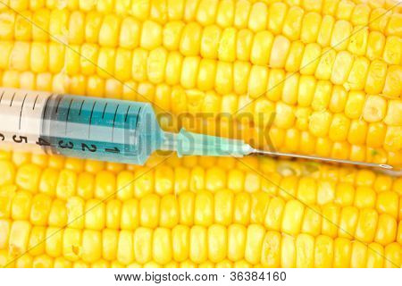 Blue liquid into syringe on corn against a white background