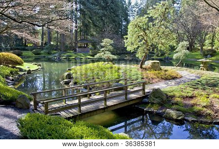 View of a garden bridge in a tranquil Japanese garden.