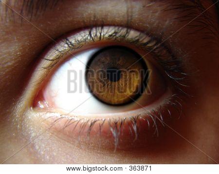 Eye Staring 3
