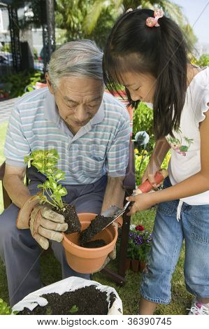 Asian grandfather with his granddaughter working in the garden