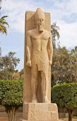 stock photo of ramses  - Standing Statue Of Ramses II In Open Air Museum Of Memphis - JPG
