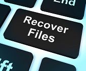 image of reconstruction  - Recover Files Key Showing Restoring From Backup - JPG