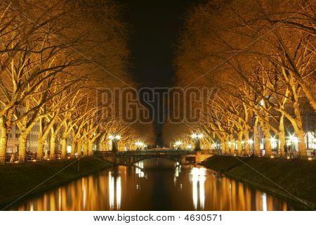 Shining River At Night