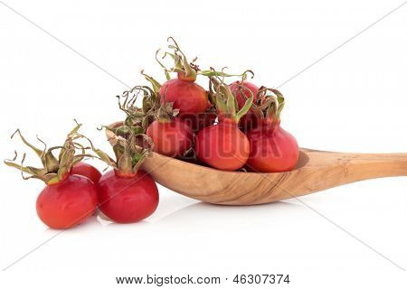 Rose hip fruit in an olive wood spoon over white background.