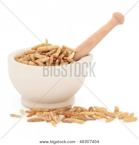 Chinese herbal medicine of lily turf root in a stone mortar with pestle over white background.