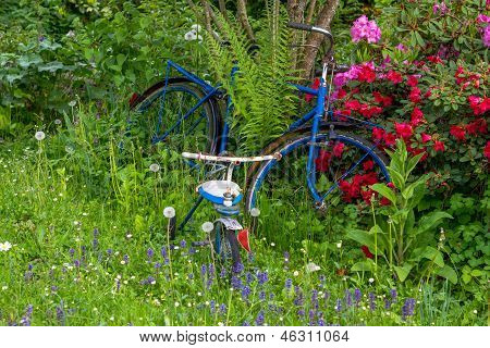 Old Bike Between Flowers In A Garden With Three Wheeler