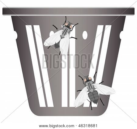 Flies On A Garbage Can