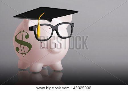 Graduate Piggy