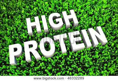High Protein Diet Food as a Concept on Grass