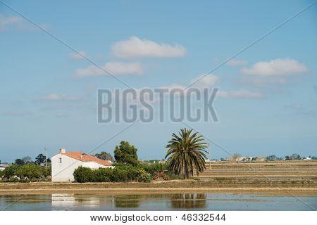 Paisaje del Delta del Ebro