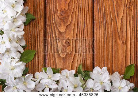 Corner floral frame from flowers apple