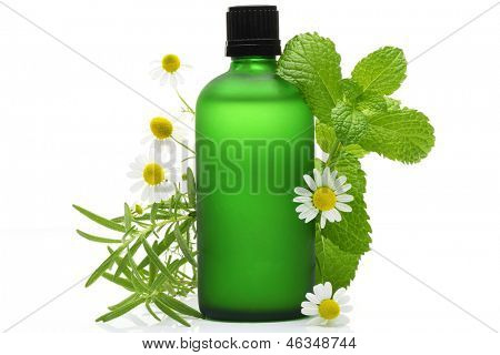 Rosemary, mint and chamomile flower with essential oil  glass bottle, isolated on white background.