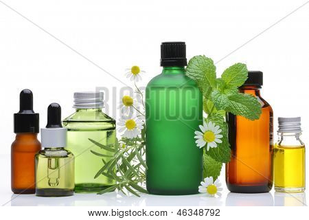 Essential oil  glass bottles with rosemary, mint and chamomile flower on white background.