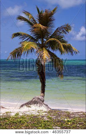 Caraibbien Blue Lagoon Sian Kaan