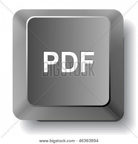 Pdf. Raster computer key.